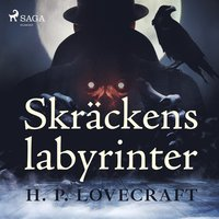 Skr�ckens labyrinter (mp3-bok)