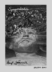 Spegelvändor : poetiska återspeglingar i fem delar : recitando i e-moll