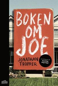 Boken om Joe (e-bok)