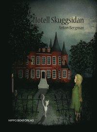 Hotell Skuggsidan (kartonnage)