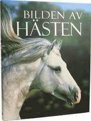 Bilden av hästen (inbunden)