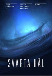 Svarta Hål : teorierna – upptäckterna – människorna
