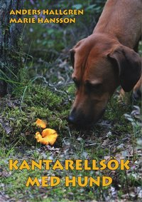 Kantarells�k med hund (kartonnage)