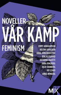 V�r kamp : feministiska noveller (e-bok)