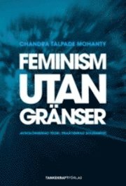 Feminism utan gränser : avkoloniserad teori praktiserad solidaritet