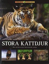 Stora kattdjur : m�t v�rldens mest fascinerande rovdjur (inbunden)