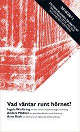 Vad v�ntar runt h�rnet? : En annorlunda �rsrapport 2010/2011 om journalistik, medier och medieforskning (h�ftad)