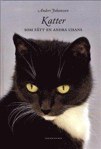 Katter som f�tt en andra chans (inbunden)