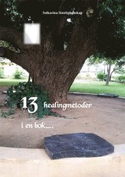 13 healingmetoder i en bok….