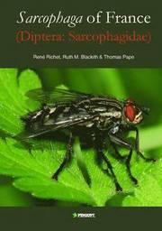 Sarcophaga of France (diptera: Sarcophaidae) (inbunden)