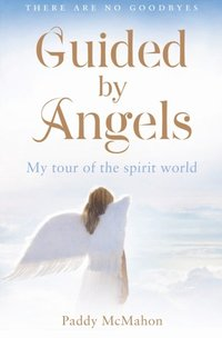 Guided By Angels: There Are No Goodbyes, My Tour of the Spirit World (e-bok)