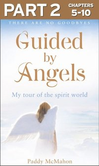 Guided By Angels: Part 2 of 3: There Are No Goodbyes, My Tour of the Spirit World (e-bok)