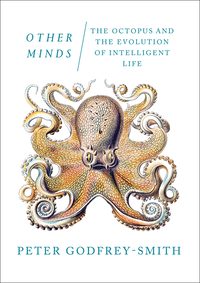 Other Minds: The Octopus and the Evolution of Intelligent Life (e-bok)