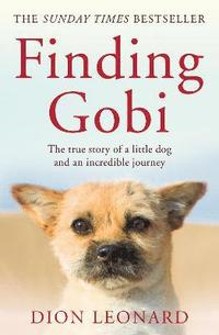 Finding Gobi (Main edition) (häftad)