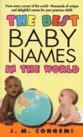 The Best Baby Names in the World (häftad)