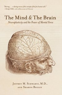 Mind and the Brain (e-bok)