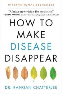 How to Make Disease Disappear (inbunden)