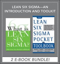 6 Sigma For Dummies Ebook