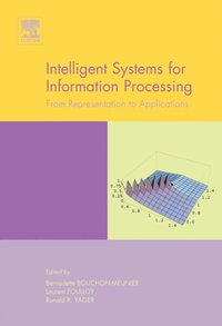 Intelligent Systems for Information Processing: From Representation to Applications (e-bok)