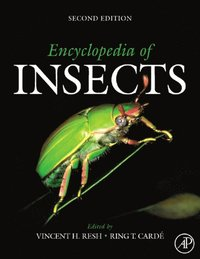 Encyclopedia of Insects (e-bok)
