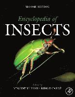 Encyclopedia of Insects (inbunden)