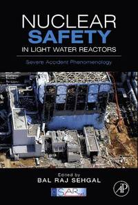 Nuclear Safety in Light Water Reactors (inbunden)