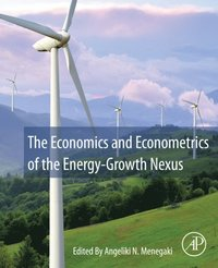 Economics and Econometrics of the Energy-Growth Nexus (e-bok)
