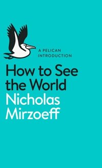 How to See the World (e-bok)