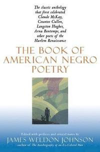Book of American Negro Poetry (häftad)