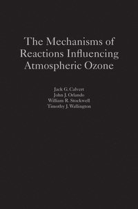 The Mechanisms of Reactions Influencing Atmospheric Ozone (inbunden)