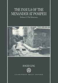 The Insula of the Menander at Pompeii: Volume 1: The Structures (inbunden)