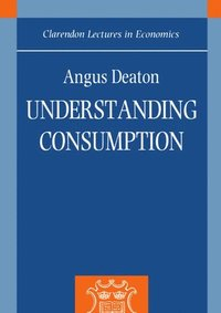 Understanding Consumption (häftad)