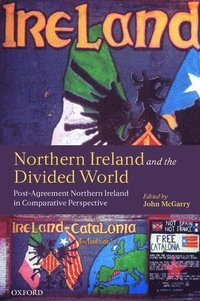 Northern Ireland and the Divided World (häftad)
