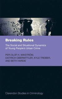 Breaking Rules: The Social and Situational Dynamics of Young People's Urban Crime (inbunden)