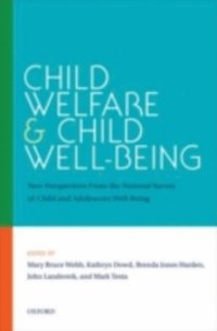 Child Welfare and Child Well-Being (e-bok)
