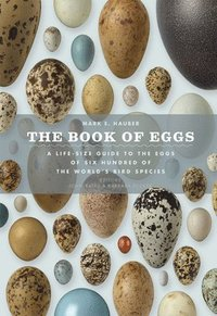 The Book of Eggs: A Lifesize Guide to the Eggs of Six Hundred of the World's Bird Species (inbunden)