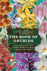 The Book of Orchids: A Life-Size Guide to Six Hundred Species from Around the World (inbunden)