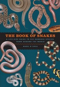 The Book of Snakes: A Life-Size Guide to Six Hundred Species from Around the World (inbunden)