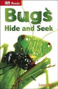 Bugs Hide and Seek (e-bok)