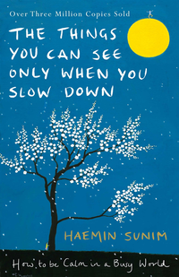 Things You Can See Only When You Slow Down (e-bok)