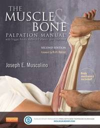 The Muscle and Bone Palpation Manual with Trigger Points, Referral Patterns and Stretching (häftad)