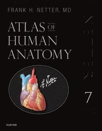 Atlas of Human Anatomy, Professional Edition (inbunden)