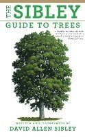 The Sibley Guide to Trees (inbunden)