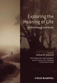 On the meaning of life john cottingham essay