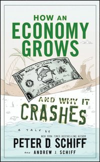 How an Economy Grows and Why It Crashes (e-bok)