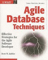 Agile Database Techniques : Effective Strategies for the Agile Software Developer (häftad)