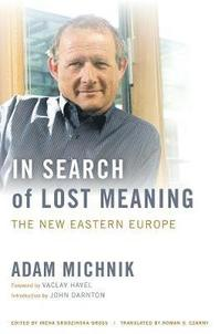 In Search of Lost Meaning (inbunden)