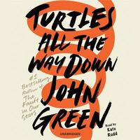 Turtles All the Way Down (cd-bok)