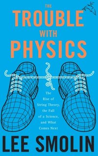 Trouble with Physics (e-bok)