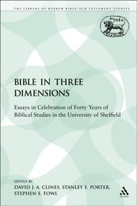Bible in Three Dimensions (e-bok)